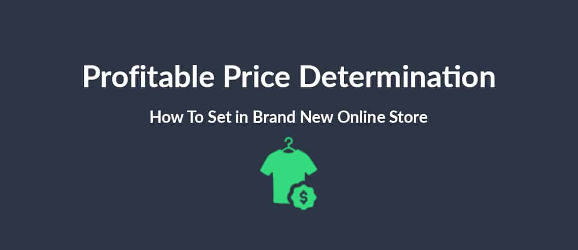 Profitable Price Determination How To Set in Brand New Online Store
